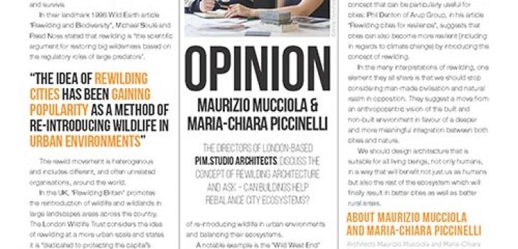PiM directors column about rewilding architecture